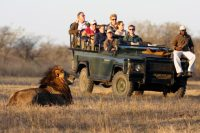 SOUTHERN AFRICA SAFARI TIPS